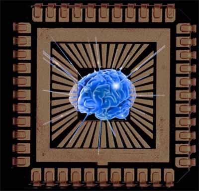 chip-cerebro